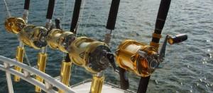 Professional fishing equipment