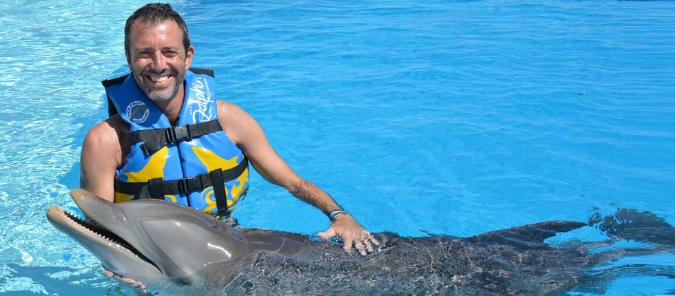 Dolphin Disco progr 1 Slide 3