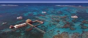 Reef Explorer 2