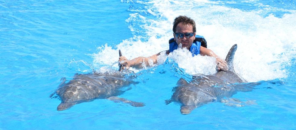 Slide 1 Dolphin Disco prog 3